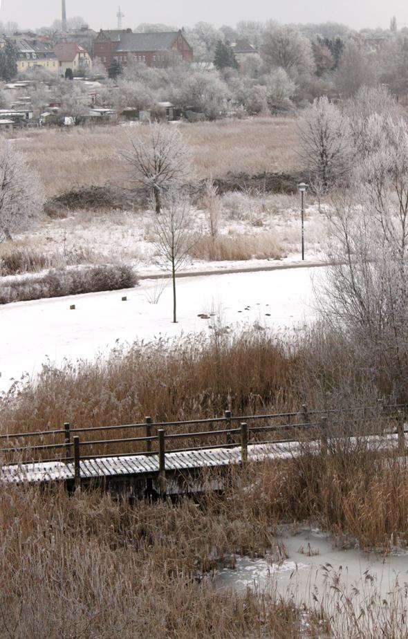 Wismar Winter