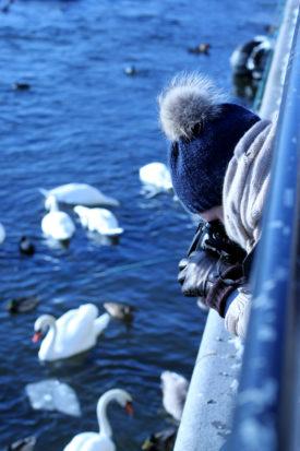Stockholm fotografieren