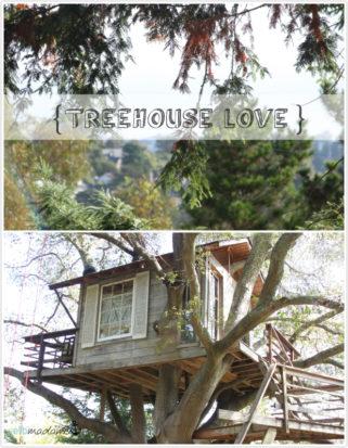 Baumhaus airbnb San Francisco