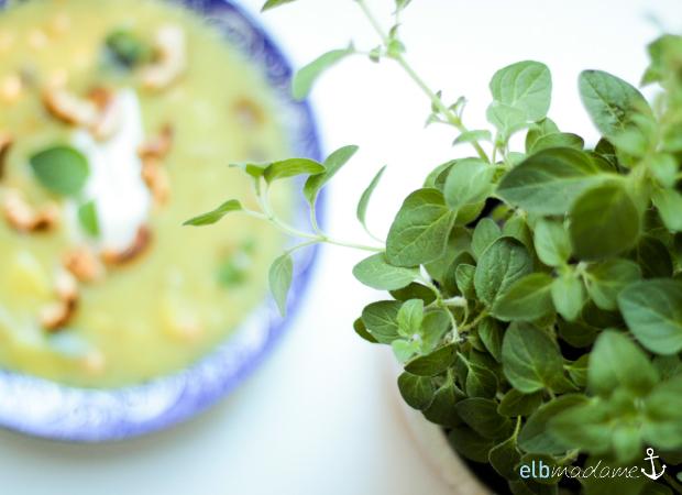 KitchenAid Akku Stabmixer Kartoffelsuppe Test