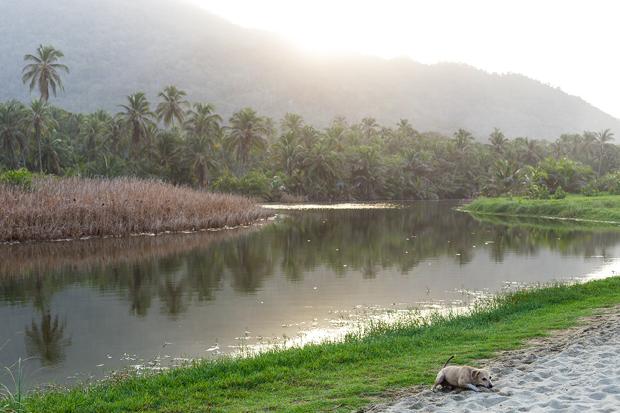 Tayrona Nationalpark elbmadame
