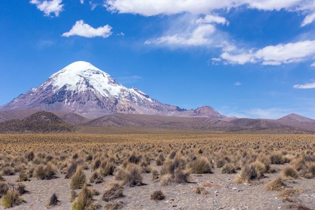 sajama nationalpark bolivien reisebericht
