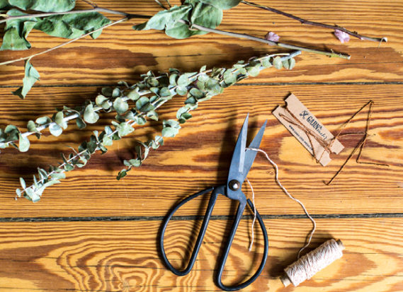 DIY Frühling Pflanzen HAY Schere