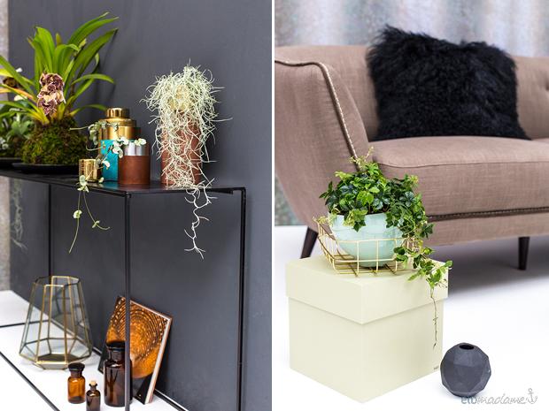 Dekorieren mit pflanzen moosb lle mit orchideen selber for Dekorieren mit pflanzen