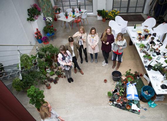 Pflanzenfreude Workshop Dekoration mit Pflanzen