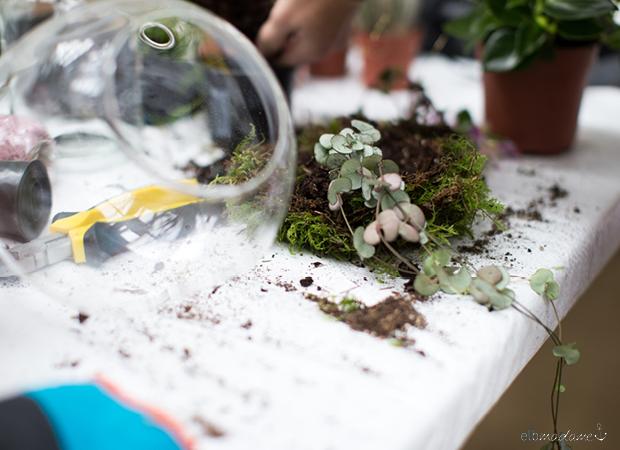 Dekoration mit Pflanzen DIY Vase Hängend