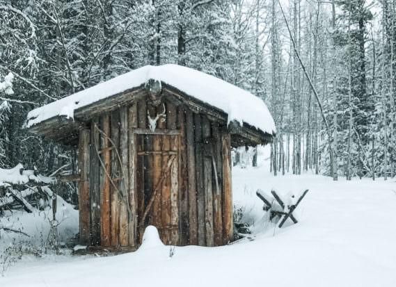 Hundeschlitten fahren Holzhütte