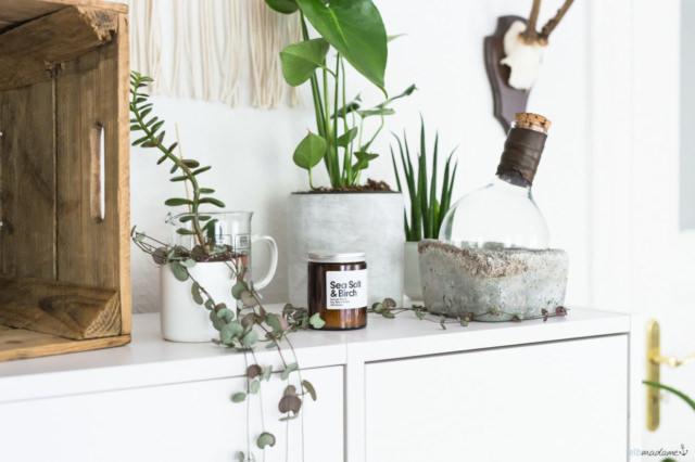 Etsy Urban Jungle Dekorieren Pflanzen Interior