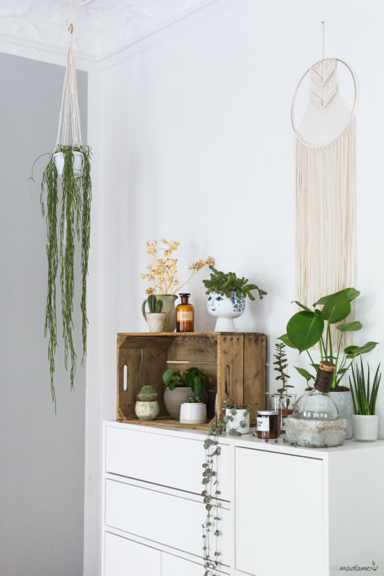 Etsy Urban Jungle Dekorieren Pflanzen Interior